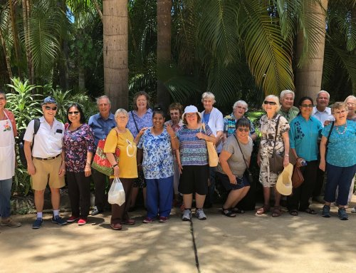 Seniors Day Out January 2019
